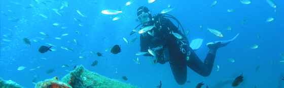 Scuba Diving in Rovinj